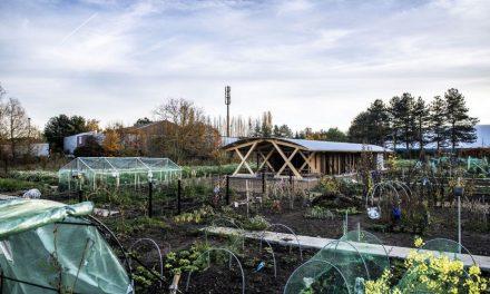 Tuinhuis met architecturale meerwaarde