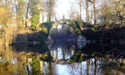 Water voor de vijver in het Boekenbergpark