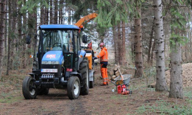 150 bomen worden geveld