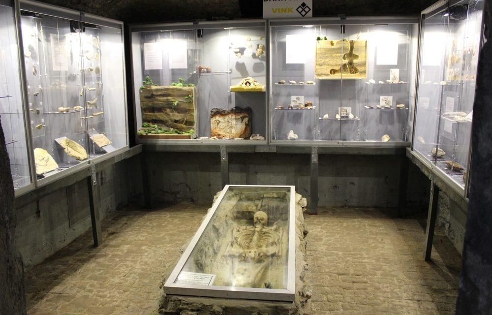 Het meest onverwachte museum van Antwerpen heropent de prehistoriezaal