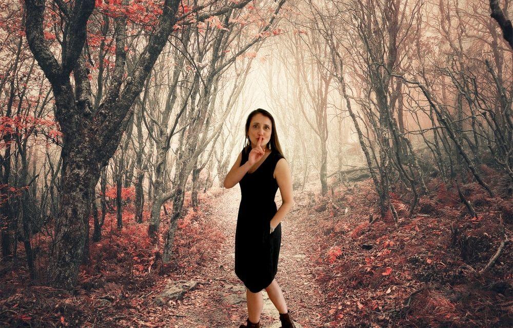 Verhalen voor volwassenen: nocturne in Rivierenhof