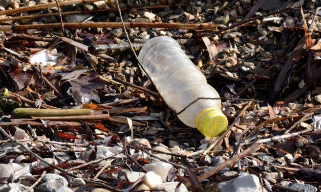 Groen Deurne wil statiegeld op plasticflessen en blikjes