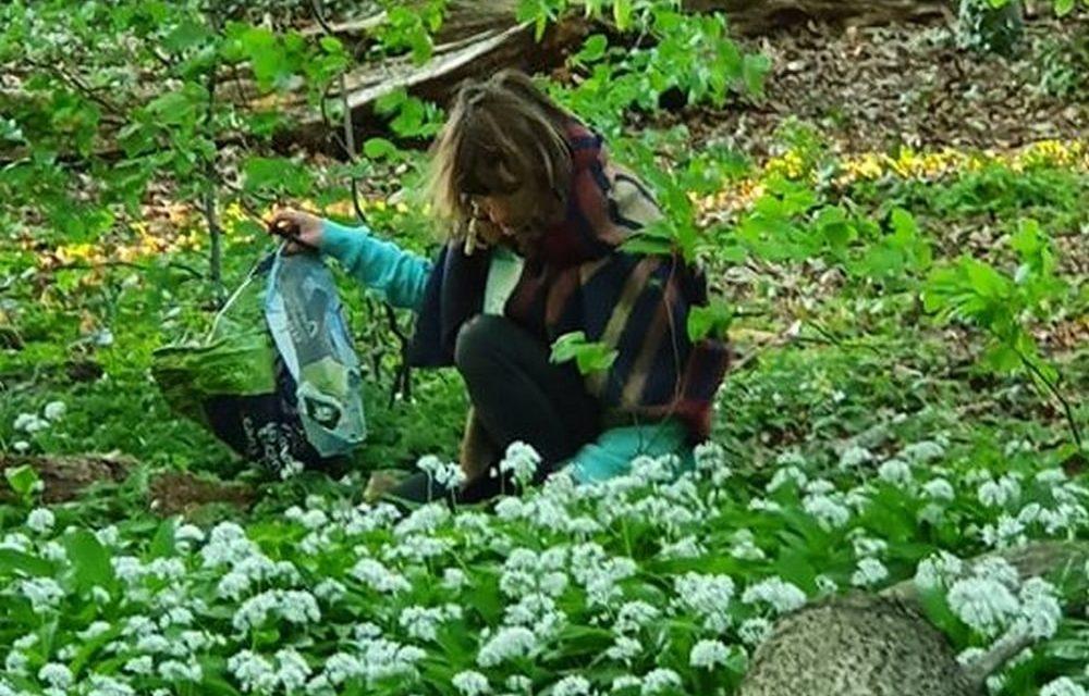 Bloemen plukken in de natuur is roofbouw