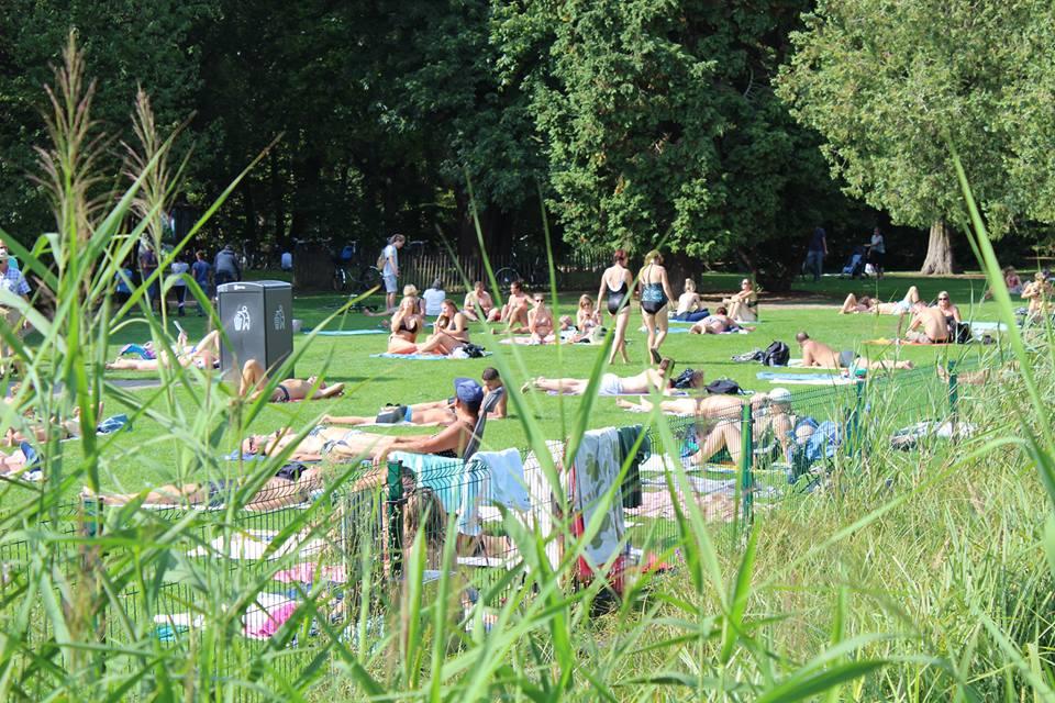 Aangepaste werking natuurlijk zwembad Boekenberg bij hitte