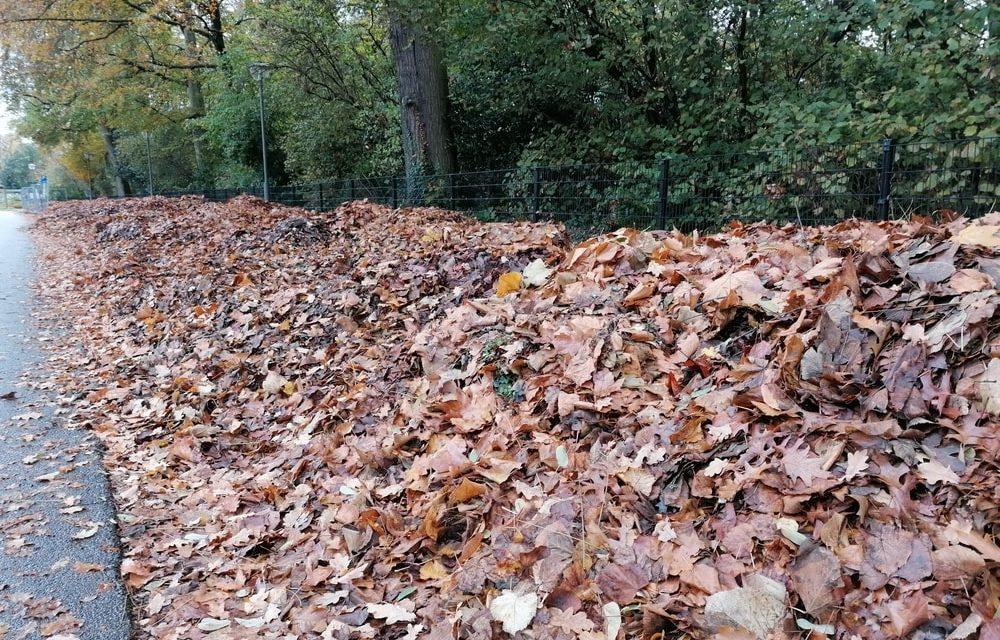 Bergen van bladeren