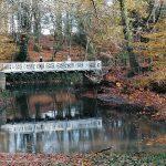 Gevaar dreigt voor gietijzeren brug in Boekenbergpark
