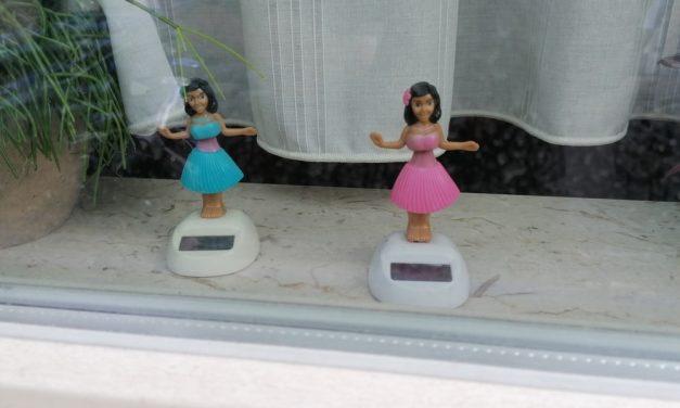 Hula danseressen in Deurne