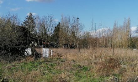 Geen betrokkenheid van de buurt bij ontwikkeling van Silsburg