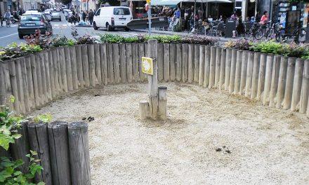 Pleintje wordt door de bewoners omgedoopt tot 'schijtpleintje'