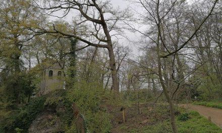 Grot in het Boekenbergpark is bedreigd